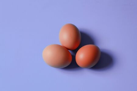 Culinary minimalist image of brown chicken eggs on violet background 版權商用圖片