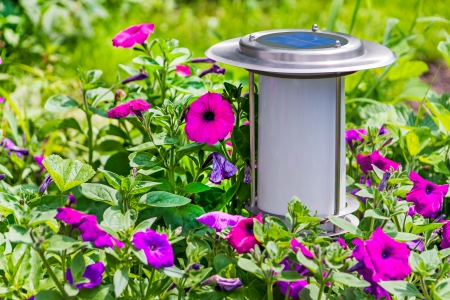 A solar-powered garden lamp - these save electricity and are very eco friendly