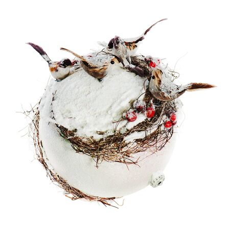 New Years composition from birds, mountain ashes, snow and a white sphere isolated on white background photo
