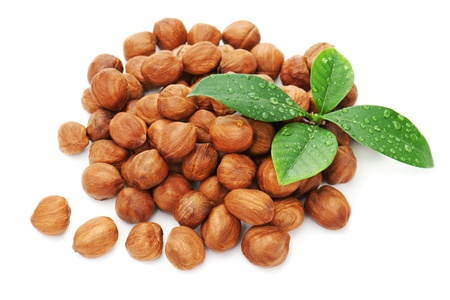 Heap of fresh shelled hazelnuts with green leaves isolated on white background  Closeup  photo