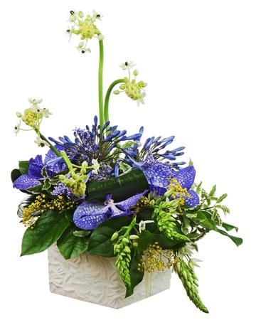 arreglo floral: Ramo de las orqu�deas y de Arabia flor de la estrella (Ornithogalum arabicum) en el jarr�n aislados sobre fondo blanco. Primer plano.