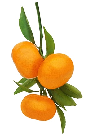 Fresh ripe tangerines with green leaves isolated on white background. Stock Photo