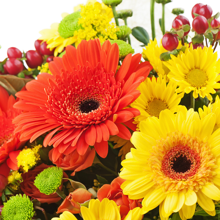 Fragment of bouquet from gerbera flowers isolated on white background  Closeup  photo