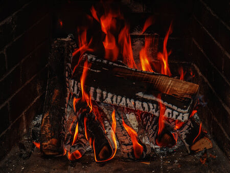 Fireplace with birch firewood and flame. Closeup. photo