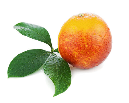 sanguine: Blood orange with green leaves isolated on white background. Closeup.