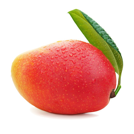 Fresh mango fruit with green leaves isolated on white background. Closeup.