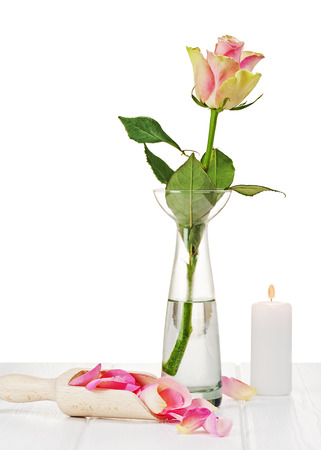 Pink roses with petals on wooden background. Closeup. photo