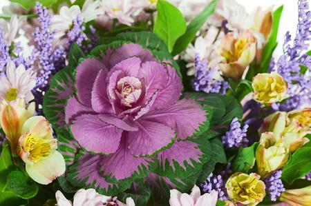arreglo floral: Fragmento de colorido ramo de flores aisladas sobre fondo blanco. Foco.