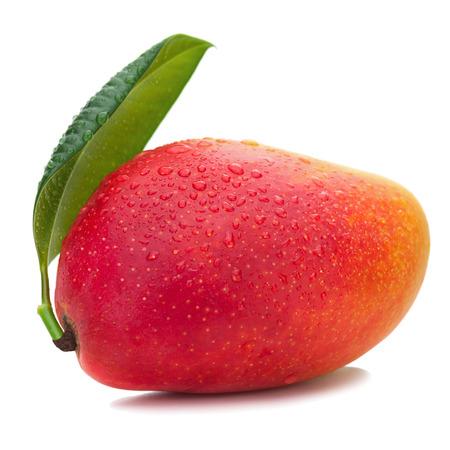 mango: Fresh Mango Fruit with Green Leaves Isolated on White Background. Closeup.