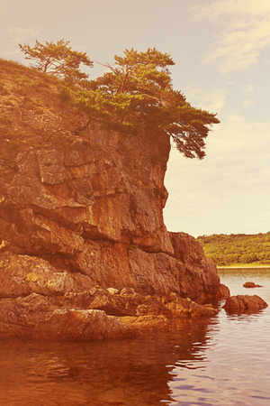 relict: Beautiful seascape with rocks and groves of relict Pinus densiflora Siebold et Zucc. Japanese Sea. South of Primorsky Krai. Vladivostok. Russia. Stock Photo
