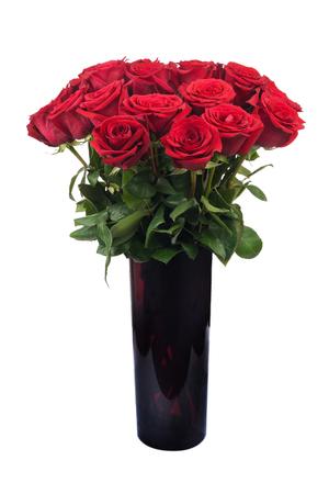 red roses: Florece el ramo de rosas rojas sobre fondo blanco.