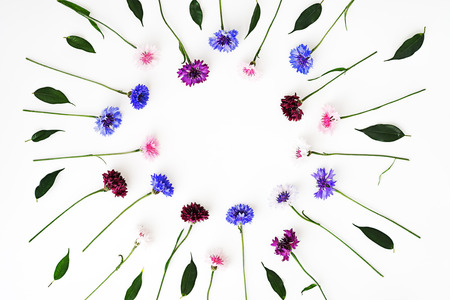 Pattern with petals of wildflowers on white background. Overhead view. Flat lay.