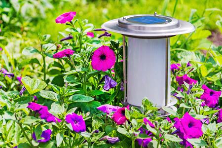 garden lamp: Solar powered garden lamp beside flowers geraniums bed.