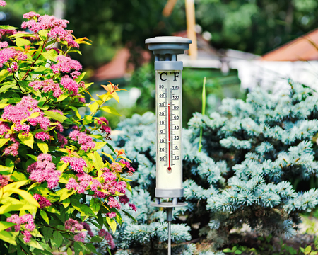 Modern outdoor thermometer in summer garden. Closeup.