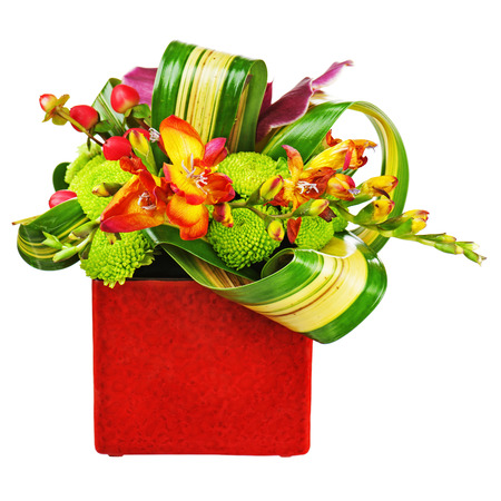 Bouquet from orchids in red vase isolated on white background. Closeup.