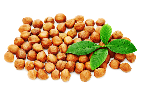 Heap of fresh shelled hazelnuts with green leaves isolated on white background. Close-up.