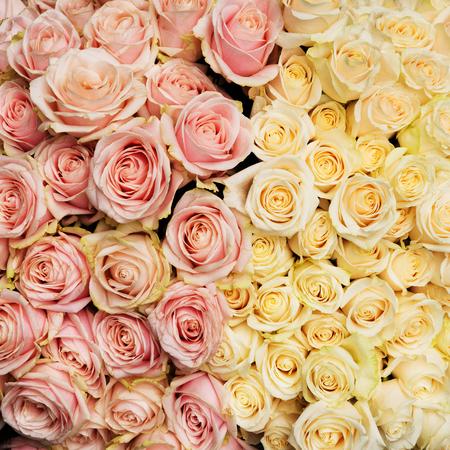 Ramo de rosas frescas y vintage. Fondo de flores naturales.