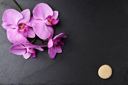 Flower arrangement of orchids on dark stone background.