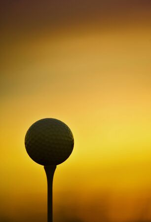 closeup of golf ball and tee in the morning
