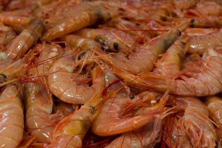 gambas: Fresh Gambas on fishmarket Stock Photo