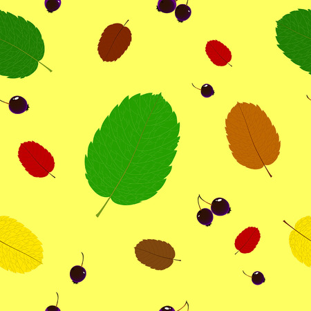 braun: Pattern of leaves and berries saskatoon