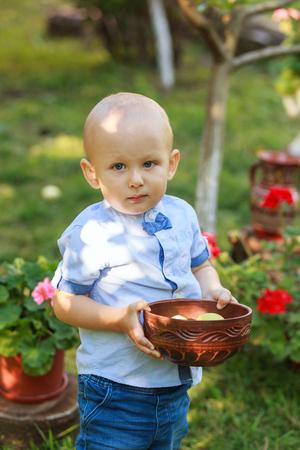 Little boy picking apple in fruit garden. Outdoor fun for children. Healthy nutrition.
