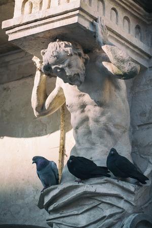 Pigeons sitting on the sculpture Atlanta. Market Square in Lviv.