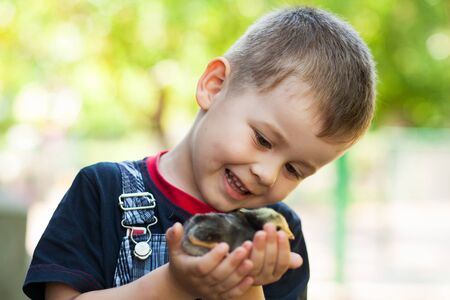 Little boy holding a baby chick on a farm. Portrait of little boy with chick outdoors at the day time. Concept of happy life.