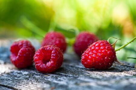 Ripe, freshly picked raspberries, on rustic wooden old surface. Ripe red raspberry berries, lie on a wooden background