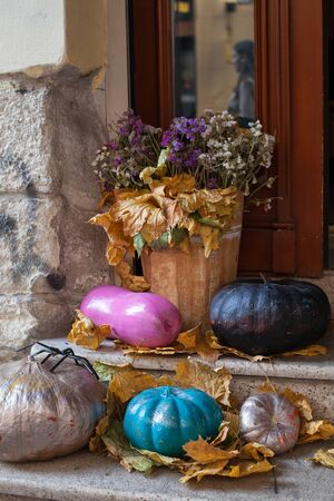 Halloween decorated front door with various color and shape pumpkins.