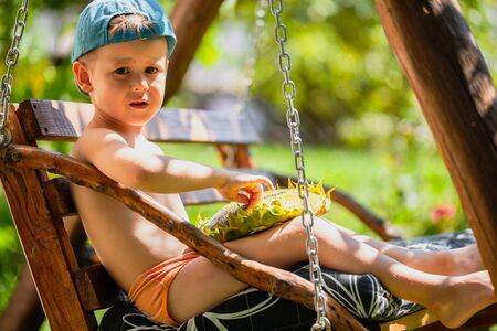 Little boy holding ripe sunflower head. Cute little boy in a baseball cap sits on a swing