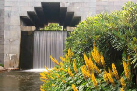Flowers with waterfall in the background photo
