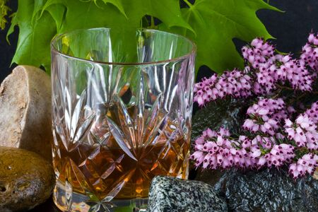 Glass of whisky on rocks Stock Photo - 6918572