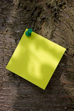 todo: A post-it note on a tree with shadows