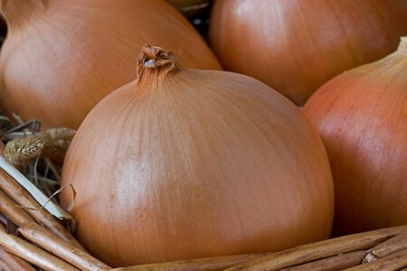 Onions in a basket photo