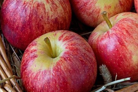 regimen: Apples in a basket Stock Photo