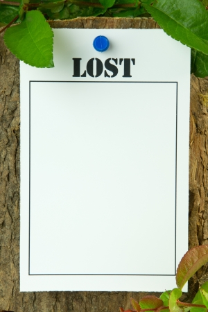 Lost poster on a tree trunk - with copy space Stock Photo