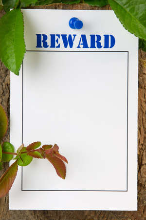 Reward notice pinned to a tree trunk - with copy space photo