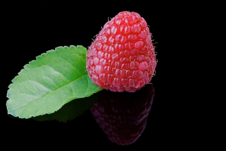 Close up of a raspberry on black, with reflection Stock Photo