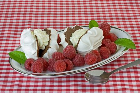 Dish of raspberries with chocolate meringues on a red gingham tablecloth Stock Photo - 15483969