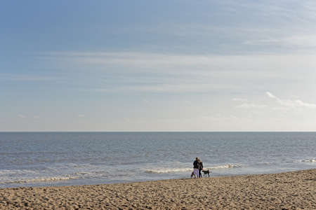 unidentified: Unidentified people walking dogs on a beach in the UK Stock Photo