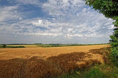 rural scene: View over the farmland of the Lincolnshire Wolds,UK, in summer Stock Photo