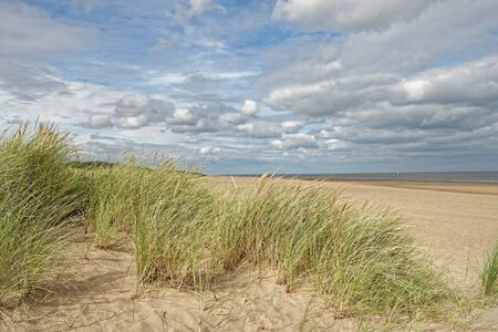 A beach with Marram Grass in Lincolnshire,UK