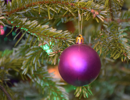 Christmas Bauble hanging from a tree Stock Photo