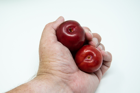 A pair of plums being held in a mans hand