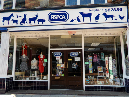 Basingstoke, United Kingdom - July 05 2018:   The front entrance to the RSPCA Charity Shop in London Street