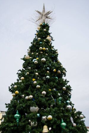 The Christmas Tree erected in the Centre of Long Branch Stock Photo
