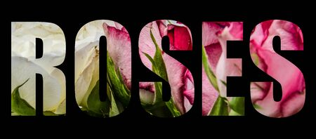 An image of roses forming the word roses on a black background