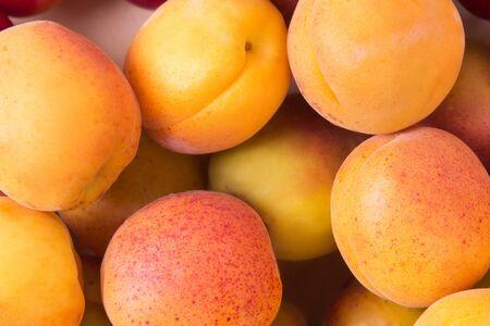 ripe fruit fresh apricot, closeup photo Stock Photo