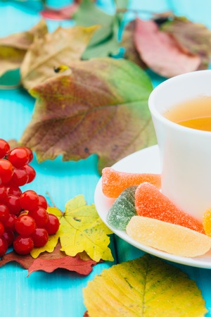 A cup of hot tea on a table in the autumn with fallen leaves Stock Photo